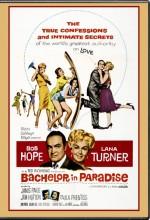 Bachelor in Paradise (1961) afişi