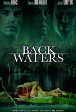 Backwaters (2006) afişi