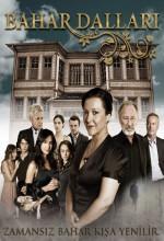 Bahar Dalları (2009) afişi