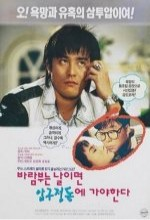 Barambuneun Nalimyeon Apgujeongdopge Gayahanda (1993) afişi