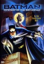 Batman: Yarasa Kadının Gizemi (2003) afişi