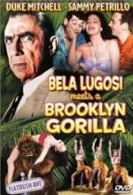 Bela Lugosi Meets A Brooklyn Gorilla (1952) afişi
