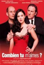 Beni Ne Kadar Çok Seviyorsun (2005) afişi