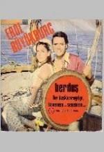 Berduş (1969) afişi