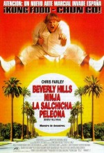 Beverly Hills Ninja (1997) afişi