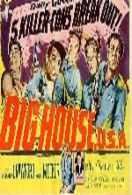 Big House, U.s.a. (1955) afişi