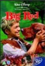 Big Red (1962) afişi