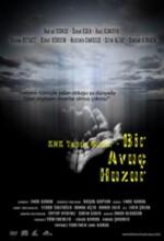 Bir Avuç Huzur (2008) afişi