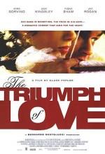 Bir Çılgın Aşık (2001) afişi