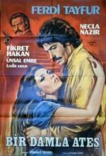 Bir Damla Ateş (1981) afişi