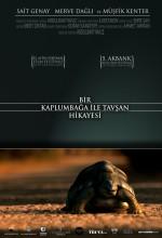 Bir Kaplumbağa ile Tavşan Hikayesi (2008) afişi