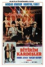 Bitirim Kardeşler (1973) afişi