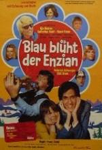 Blau Blüht Der Enzian (1973) afişi