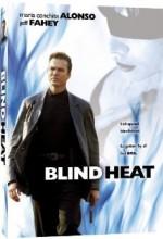 Blind Heat (2002) afişi