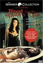 Blood From The Mummy's Tomb (1971) afişi