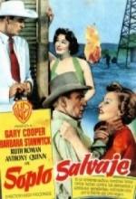 Blowing Wild (1953) afişi