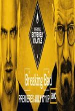 Breaking Bad (2011) afişi