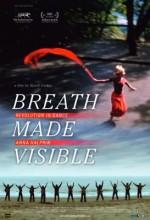 Breath Made Visible: Anna Halprin (2009) afişi