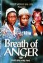 Breath Of Anger (2007) afişi