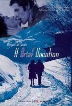 A Brief Vacation (1973) afişi