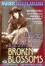 Kırık Tomurcuklar (1919) afişi