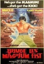 Bruce Li's Magnum Fist (1978) afişi