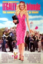 Bu Nasıl Sarışın (2001) afişi
