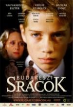 Budakeszi Srácok (2006) afişi