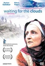 Bulutları Beklerken (2003) afişi