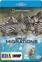 Büyük Göçler (2010) afişi