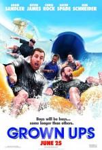 Büyükler (2010) afişi
