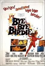 Bye Bye Birdie (1963) afişi