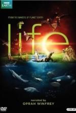 Bbc Hayat - Hayat Yapımı (2010) afişi