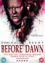 Before Dawn (2013) afişi