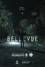 Bellevue (2017) afişi