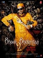 Bhool Bhulaiyaa 2 (2020) afişi