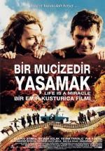 Bir Mucizedir Yaşamak (2004) afişi
