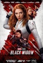 Black Widow (2020) afişi
