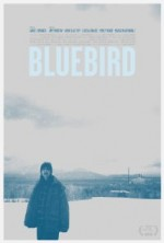 Mavi Kuş (2013) afişi