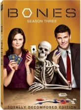 Bones Sezon 4 (2012) afişi