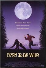Arkadaşım Goril (1995) afişi