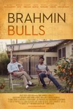 Brahmin Bulls (2013) afişi
