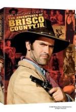 Brisco County Jr. (1993) afişi