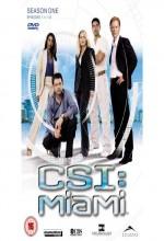 CSI: Miami (2002) afişi
