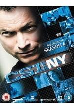 CSI: NY (2008) afişi