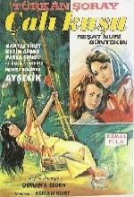 Çalıkuşu (1966) afişi