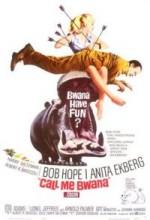 Call Me Bwana (1963) afişi