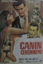 Canın Cehenneme (1965) afişi