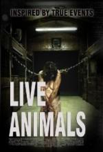 Canlı Hayvanlar