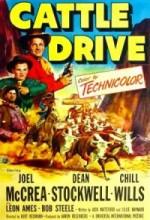Cattle Drive (1951) afişi